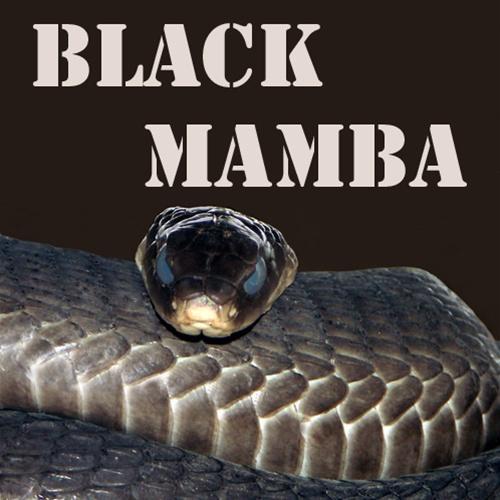 NIC SALTS Black Mamba Flavor