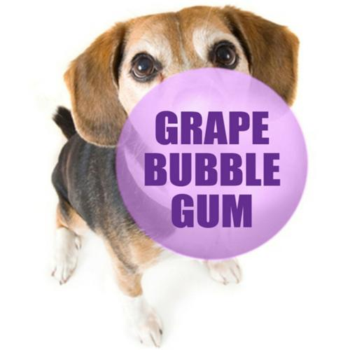 NIC SALTS Grape Bubble Gum Flavor